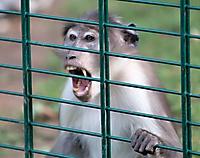 Zoo Landau 2015-07_21