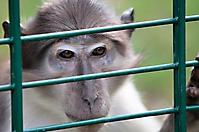 Zoo Landau 2015-07_22